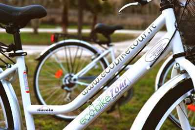 foto eco bike399